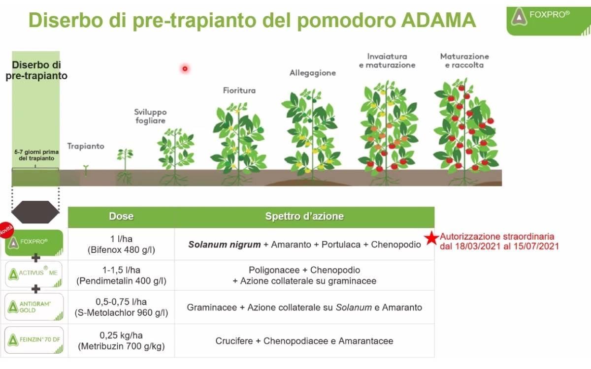 Diserbo_pomodoro_pre_impianto_Adama