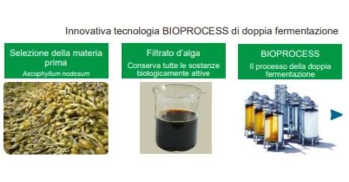 Innovativa tecnologica bio process