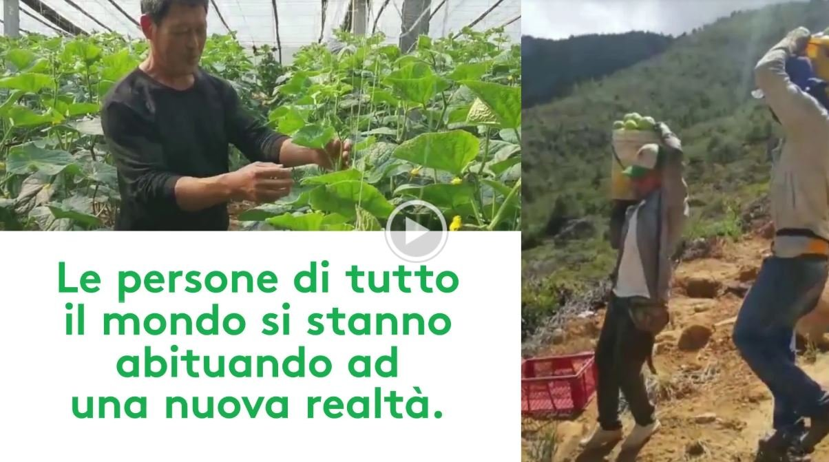 ADAMA AGRICOLTURA INTEGRATA