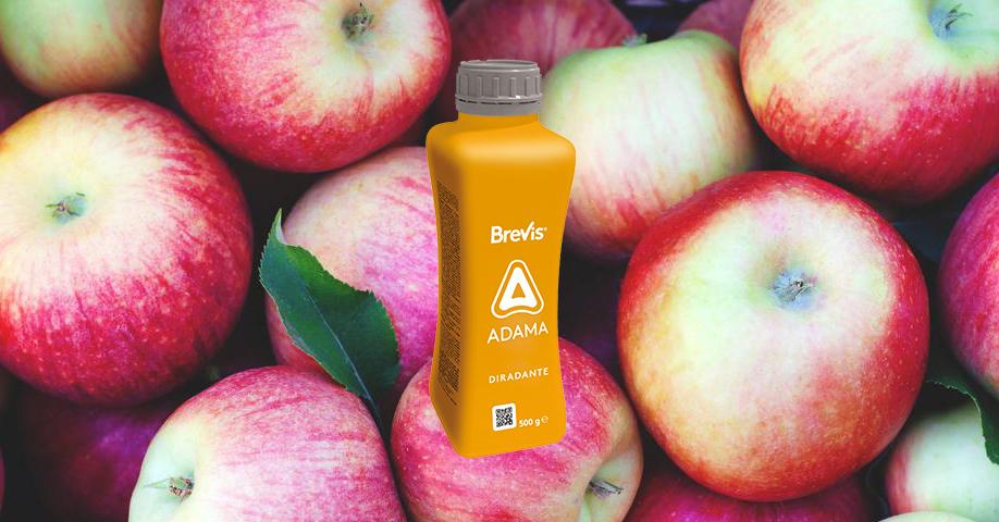 BREVIS melo: alimenti sicuri e raccolti più abbondanti_Adama