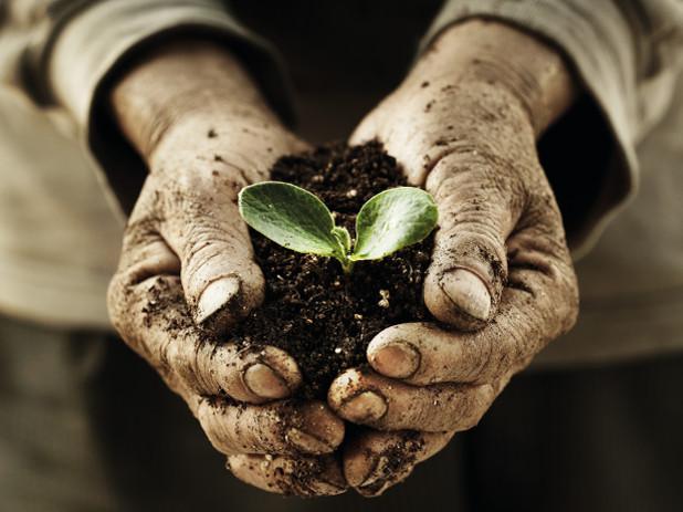 Adama conservazione prodotti fitosanitari
